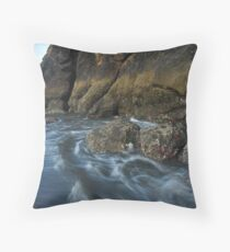 Littoral Zone  Throw Pillow