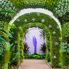 Floral Arches by mrthink