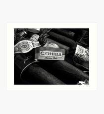 cuban cohiba  Art Print