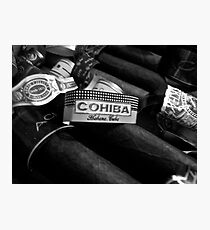 cuban cohiba  Photographic Print