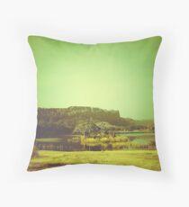 Ranthambore Park Throw Pillow