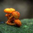 Lean on me on him (hdr) by tantricpark182