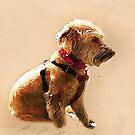 Terrier Cross by Mark Salmon