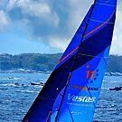 Vestas - Volvo race by Nancy Richard