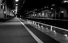 MKC Platform 3 - 10:22pm by George Parapadakis ARPS (monocotylidono)