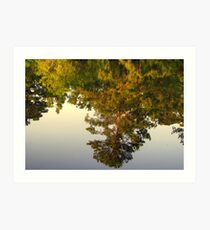 Reflection In Still Waters Art Print