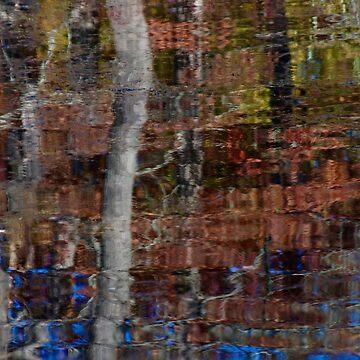 Pepperidge Pond by Kirstyshots