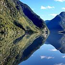 Crooked Arm Doubtful Sound by Kathie Nichols