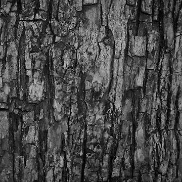 Bark VI Monochrome by The-Blanc-Sheep