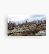 Desolate Mountain 3 Canvas Print