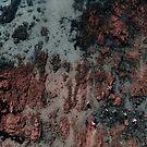 Auf dem Mars spazieren von Ingrid Beddoes