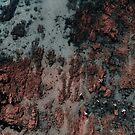 Walking on Mars by Ingrid Beddoes