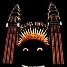 Looney Park - Luna Park at Night - Sydney - Australia by Bryan Freeman