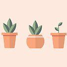 Plants by takeabreath