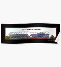 Williams Brice Stadium Poster