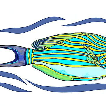 Striped Surgeonfish by leororing