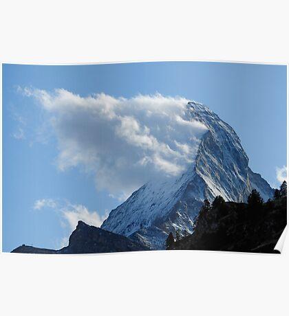 MOUNTAIN BEARD -II- Poster