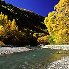 Autumn colours, Arrowtown by Paul Mercer