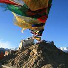 Prayers on top of the World by Vivek Bakshi