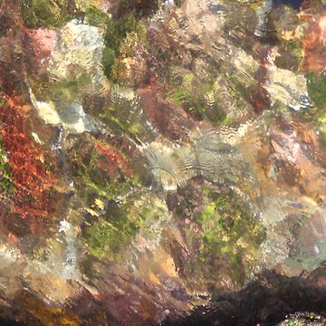 Mosaic  by daddypub