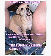 nibbles funny kritters banner Poster