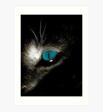Blue eyed devil Art Print