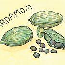 Cardamom | Kardemomme by Gina Lorubbio