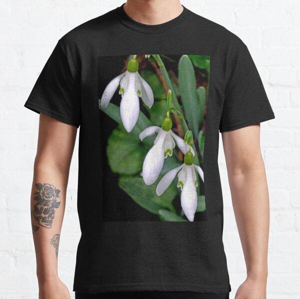 Pretty Snowdrop Trio............  Classic T-Shirt