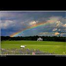 Ottawa Rainbow Mindscape Poster by Wayne King