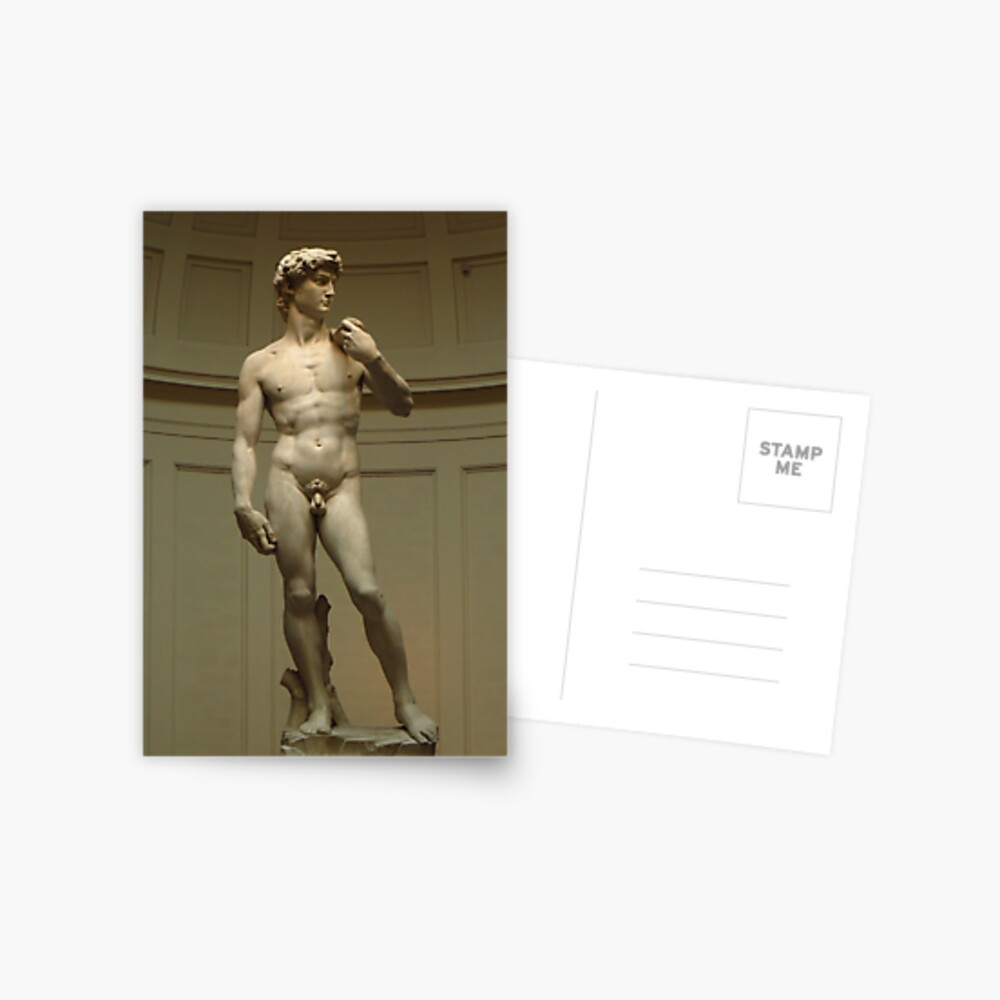 David; Michelangelo's Masterpiece Postcard
