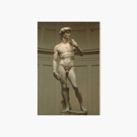 David; Michelangelo's Masterpiece Art Board Print