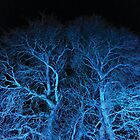 blue trees with black sky by brilliantbeings
