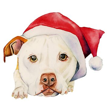 White Pit Bull Terrier Dog with Santa Hat Portrait by namibear