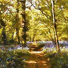 everdon woods by cynthiab