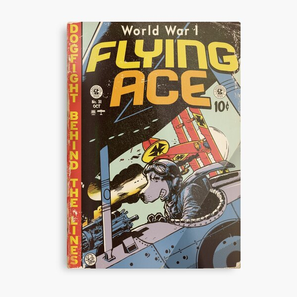 World War 1 Flying Ace Metal Print