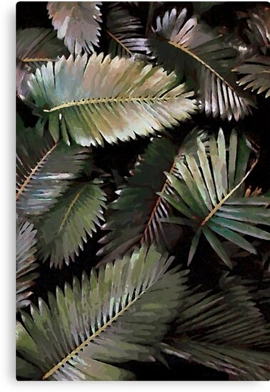 Dark Palm Leaves  by Menega  Sabidussi