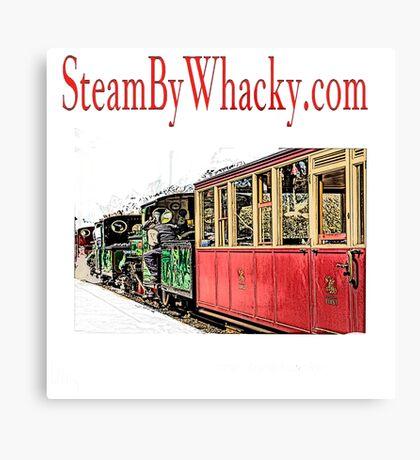 Steam bywhacky.com Canvas Print