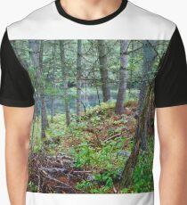 Hidden Lake Graphic T-Shirt