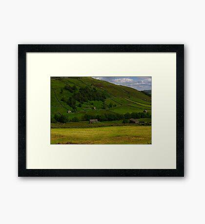 Hillside Barns - Swaledale,North Yorks. Framed Print
