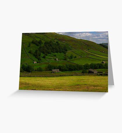 Hillside Barns - Swaledale,North Yorks. Greeting Card