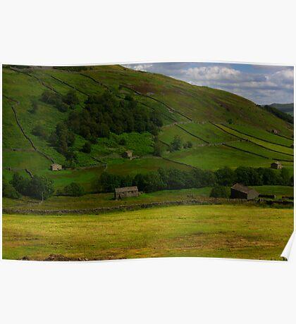 Hillside Barns - Swaledale,North Yorks. Poster