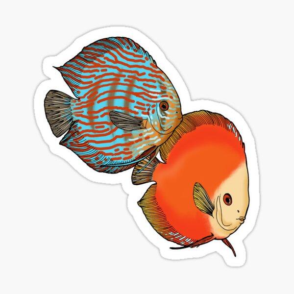 Discus fish! Sticker
