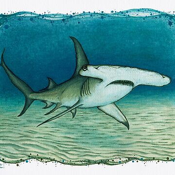 """Great Hammerhead Shark"" by Amber Marine ~ watercolor painting, art © 2016 by AmberMarine"