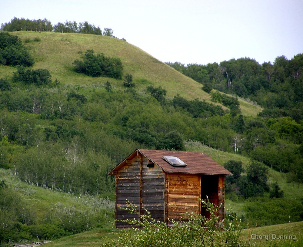 Little house on the prairie by Cheryl Dunning