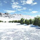 Snow in Summer by JoreJj Z. Elprehzleinn