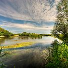 Across the Avon by Mark Waugh