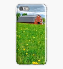 New England Landscape iPhone Case/Skin