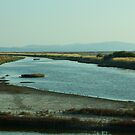 Salt Marshes on the Island of Lesvos by photoloi