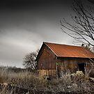 Blot On The Landscape by David Lawrence