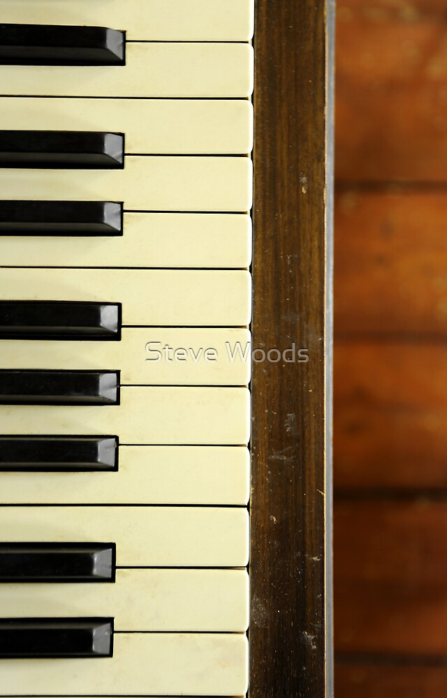 Piano Keys by Steve Woods